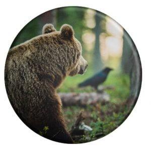korppi ja karhu magneetti