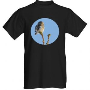 varpuspöllö t-paita musta