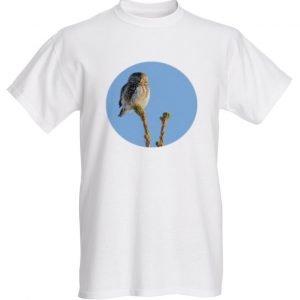 varpuspöllö t-paita