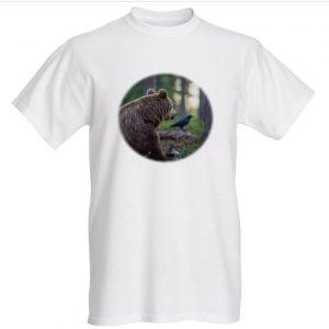 korppijakarhu valk