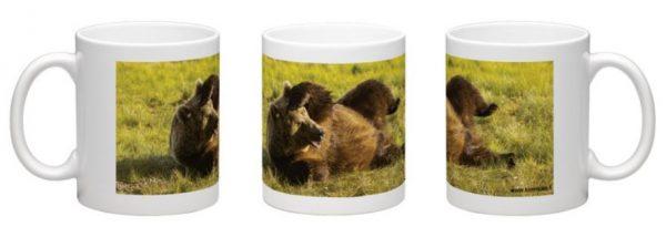 tähystävä karhu muki